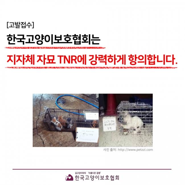 지자체TNR.jpg