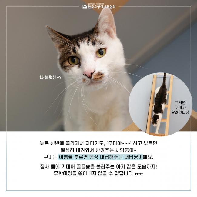 KakaoTalk_20190927_134538772_02.jpg