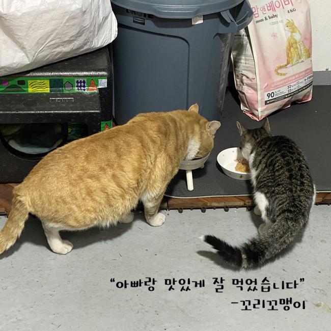 대장_꼬리꼬.jpg