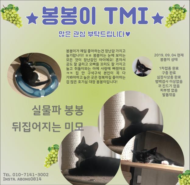 봉봉홍보4-1.png