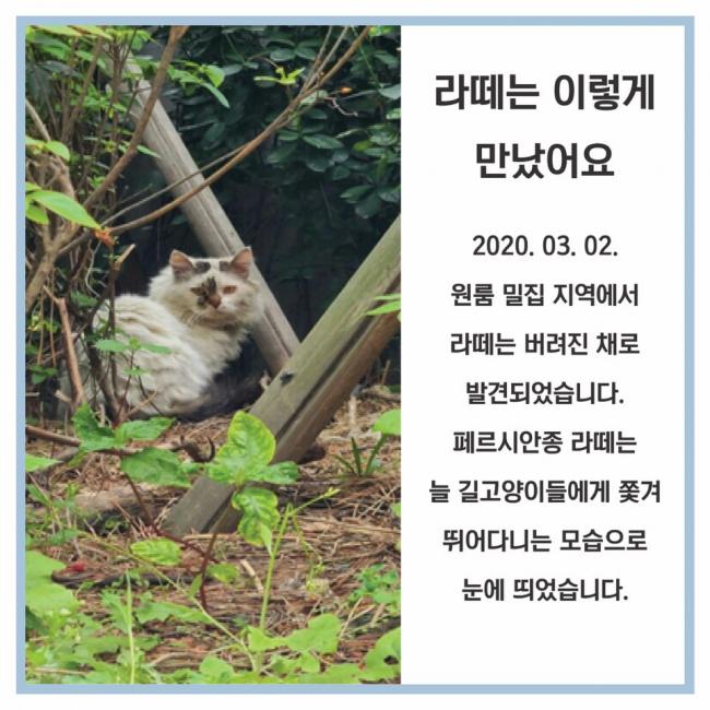 KakaoTalk_20200520_083125990_02.jpg