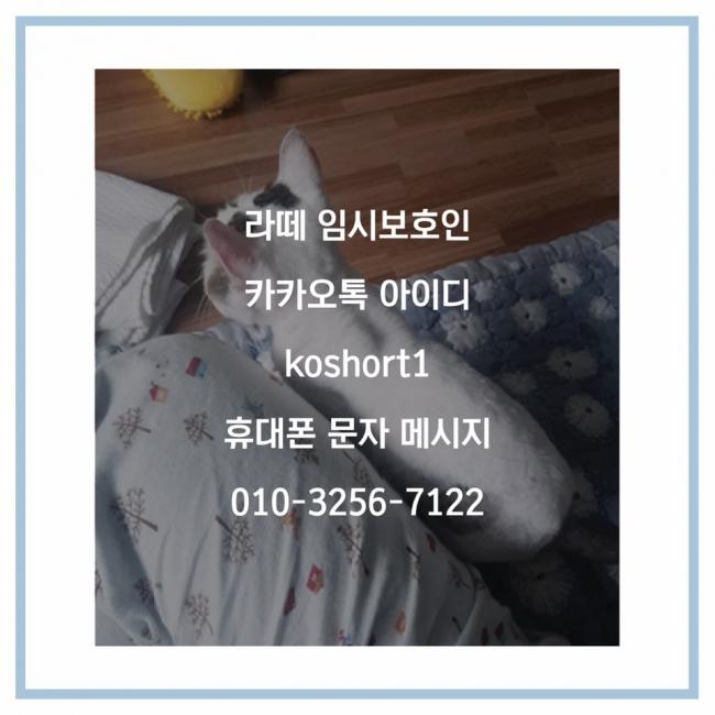 KakaoTalk_20200520_083125990_09.jpg