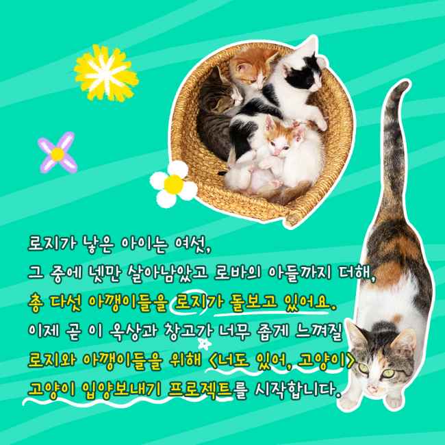 KakaoTalk_20210603_235946613_08.jpg