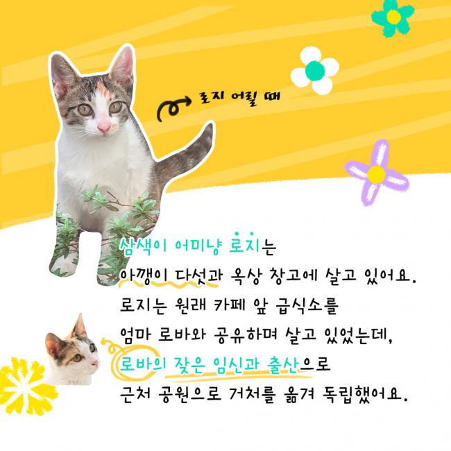 KakaoTalk_20210603_235946613_01.jpg