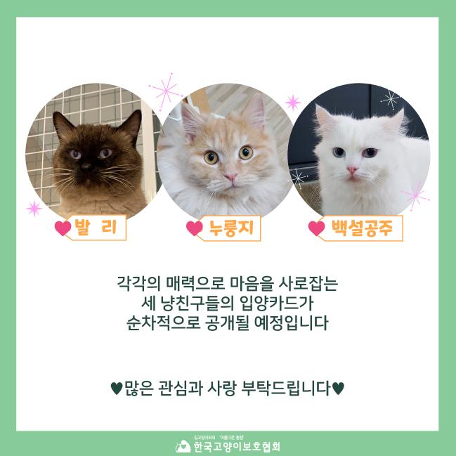 12월입소소식 (6).jpg