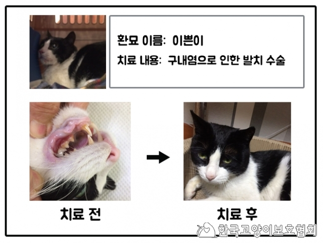 치료지원(2_이쁜이).jpg