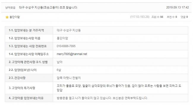 (9월)냥이찾기_세부3-1.jpg