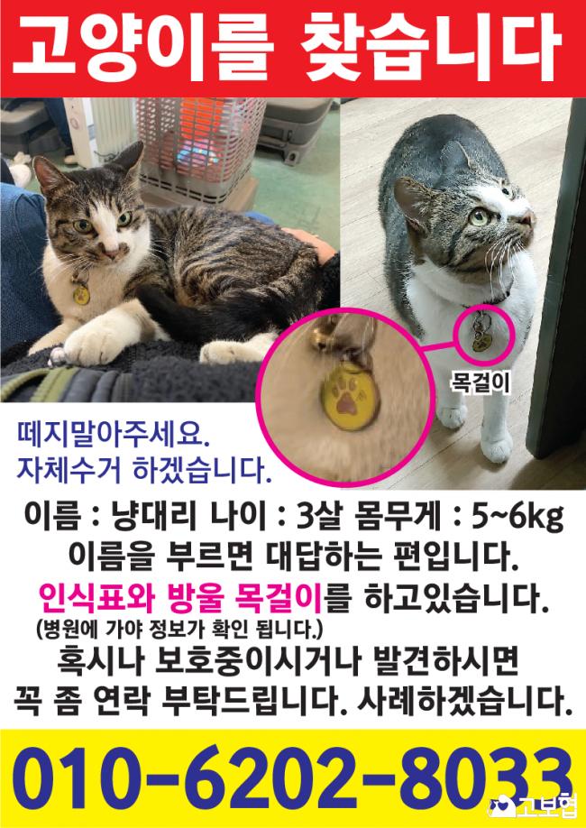 (2월) 냥이2_세부정보1-4.png