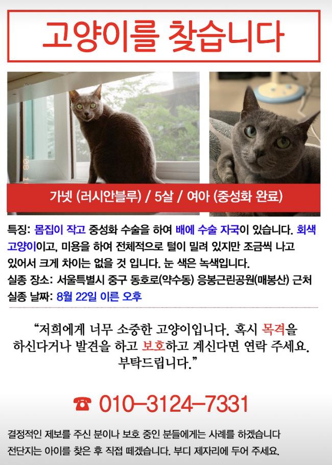 (8월)냥이찾기_세부2-2.jpeg