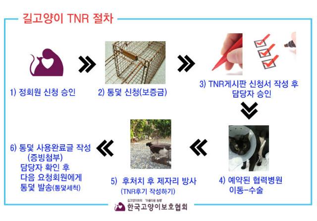 TNR절차2.jpg