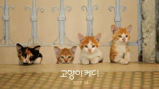 홍보용 스틸3.jpg