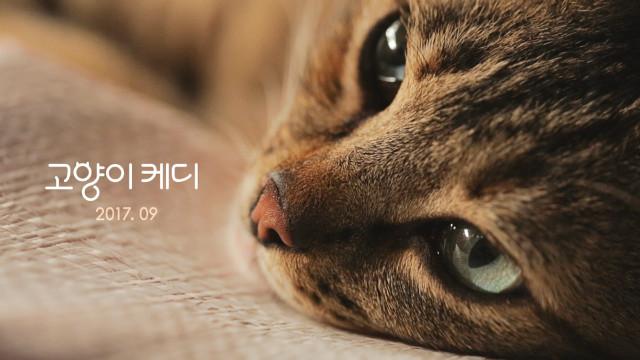 홍보용 스틸4.jpg