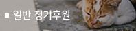 후원종류_정기후원.jpg